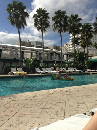 Surfcomber Miami South Beach, a Kimpton Hotel:                   Loved the pool