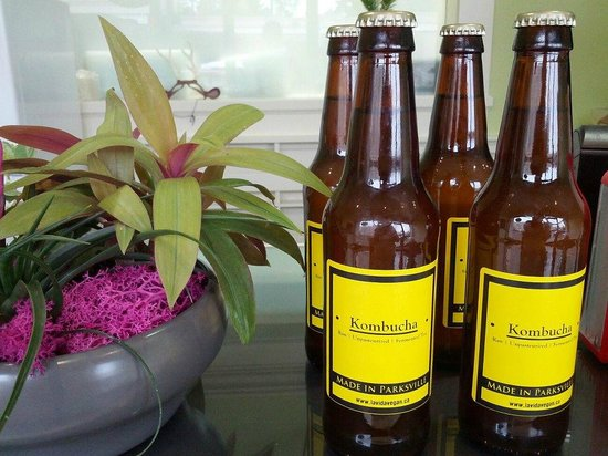 La Vida Vegan : Kombucha Brewed in House