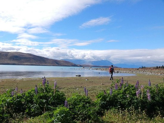 Parkbrae Estate:                   at lake tekapo