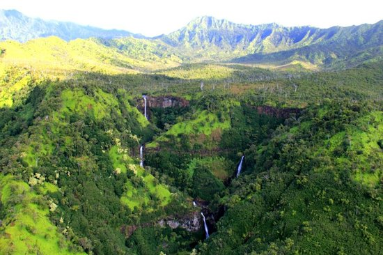 best helicopter ride in kauai with Locationphotodirectlink G60614 D667397 I61348121 Inter Island Helicopters Hanapepe Kauai Hawaii on LocationPhotoDirectLink G60614 D667397 I66642965 Inter Island Helicopters Tours Hanapepe Kauai Hawaii as well Kauai together with Maui further Kauai also Kauaitoursivc.