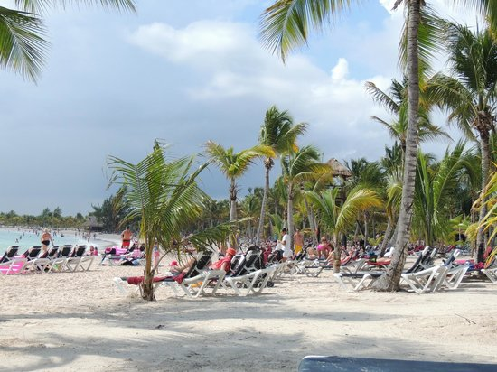 Barcelo Maya Tropical:                                     beach: it was awesome!