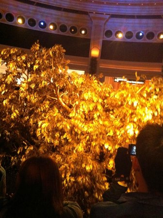 Wynn Macau: The beautiful golden tree