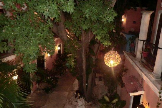 Hotel Casa de las Flores Playa del Carmen:                   Garden