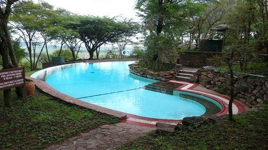 Serengeti Serena Safari Lodge:                   pool