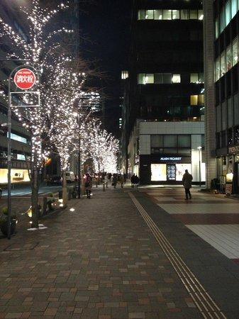 Four Seasons Hotel Tokyo at Marunouchi: Nakadori St Xmas lights