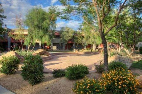 Desert landscaping around hotel Picture of Thunderbird Executive