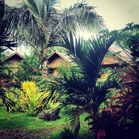 Reggae Guesthouse:                                     <3 I miss this place