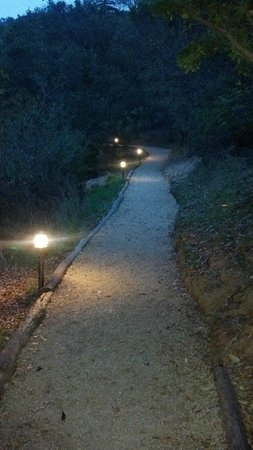 Ventana Inn & Spa:                   Walking path to restuarant
