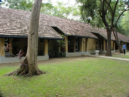 Habarana Village by Cinnamon: rooms