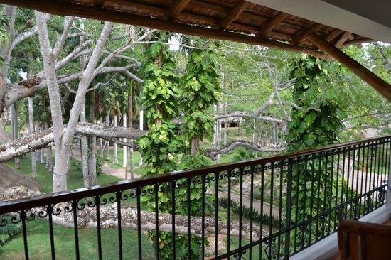 Hotel & Bungalows Mayaland:                   Vue du balcon