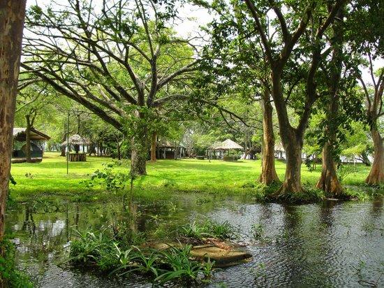 Habarana Village by Cinnamon: Garden