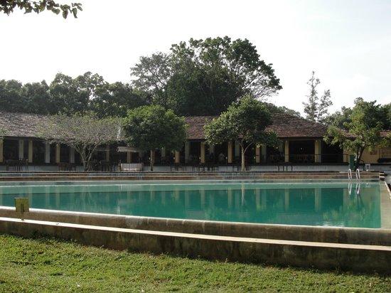 Habarana Village by Cinnamon: pool
