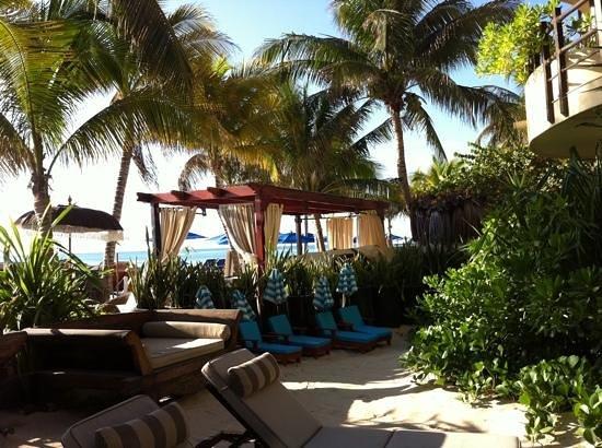 El Taj Oceanfront & Beachside Condos Hotel:                   Sencillamente hermoso!