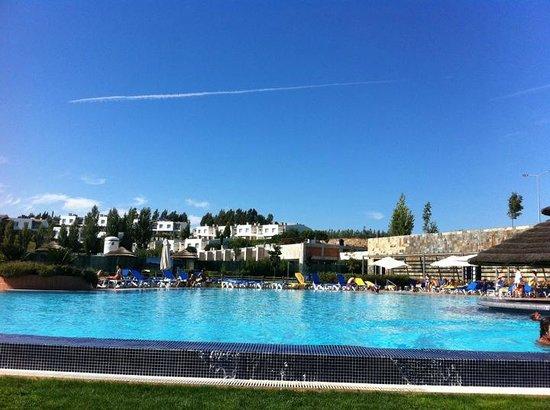 Montebelo Aguieira Lake Resort & Spa:                   Vista da piscina