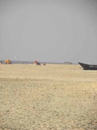 The Leela Goa:                   Amazing beach right in front of Leela