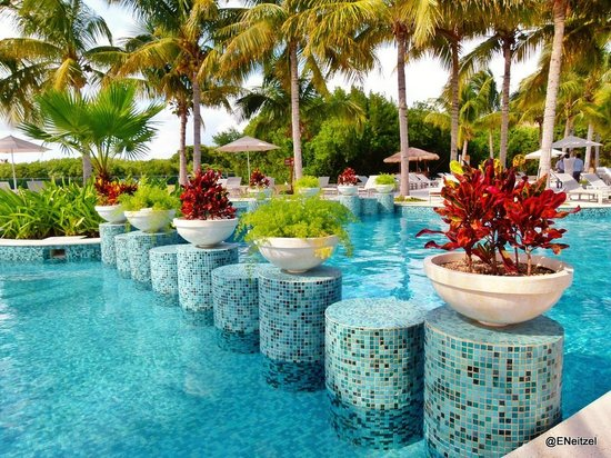 Hacienda Tres Rios:                                     Festive pool plants