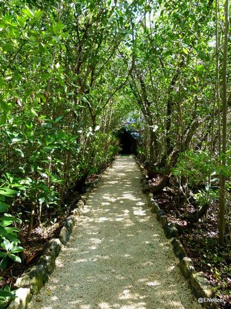 Hacienda Tres Rios:                                     Nature park walk