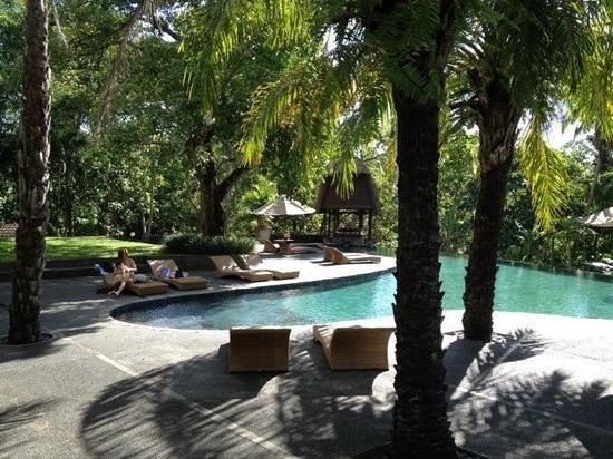 The Farm at San Benito:                                                       pool area
