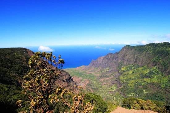 View of Kalalau Valley from Puuo Kila