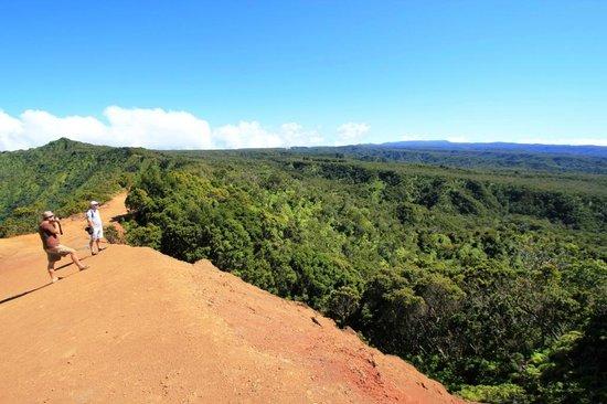 Kauai's Rainforest seen from Puuo Kila on Kauai, Hawaii