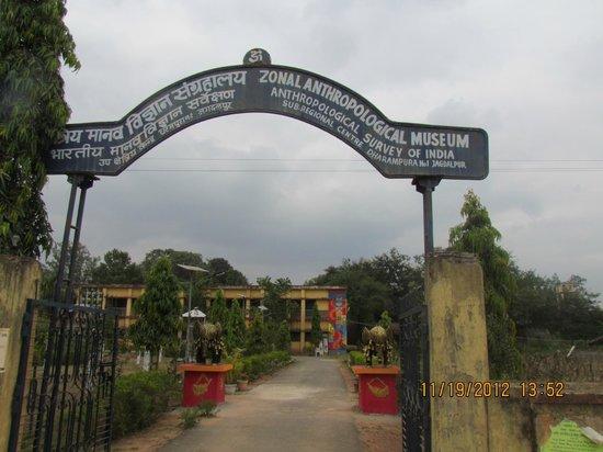 Jagdalpur, الهند:                   Zonal Anthropological Museum, Jagdalpur                 