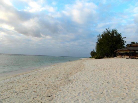Manuia Beach Resort:                   beach