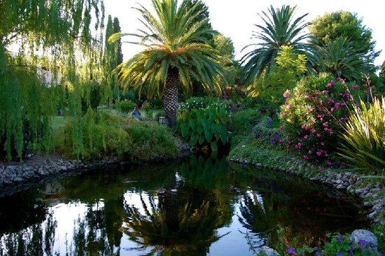 Blue & Green Vilalara Thalassa Resort: Gardens Near Reception Area