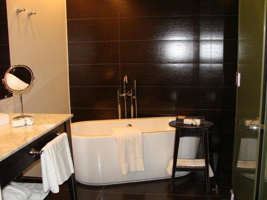 The Singular Patagonia :                   luxury bathroom