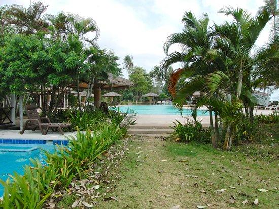 Samui Orchid The Ocean Resort:                   Vue sur la piscine