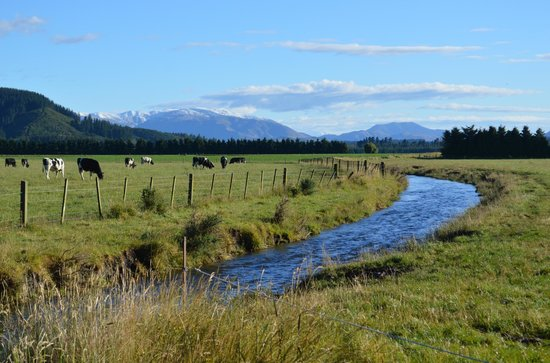 Glenview Farmstay:                   Just one of the spectacular views around the farm.