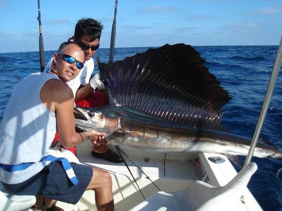 Master Baiter's Sportfishing & Tours