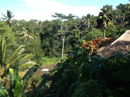 Villa Semana:                   View over the Agung River from our villa