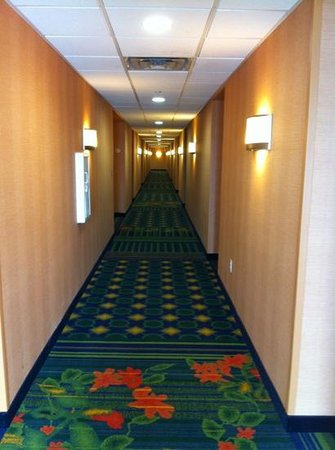 Fairfield Inn & Suites Laredo:                   pasillo