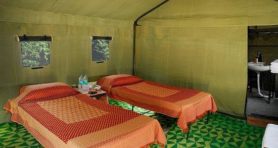 Rishikesh - The Camp 5 Elements by Aspen : Deluxe Tents