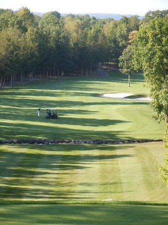 Black Bear Ridge Golf Club:                   Black Bear Ridge
