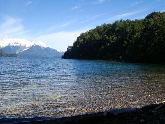 La Patagonia, Argentina:                   Los alerces
