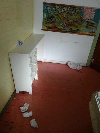 Banana Republic Guesthouse:                   Estado de las habitaciones