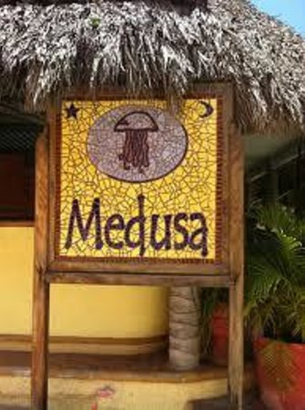 medusa best in town sayulita