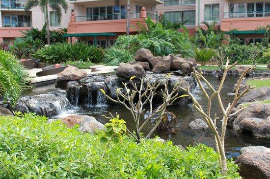 Honua Kai Resort & Spa:                                     Koi Pond