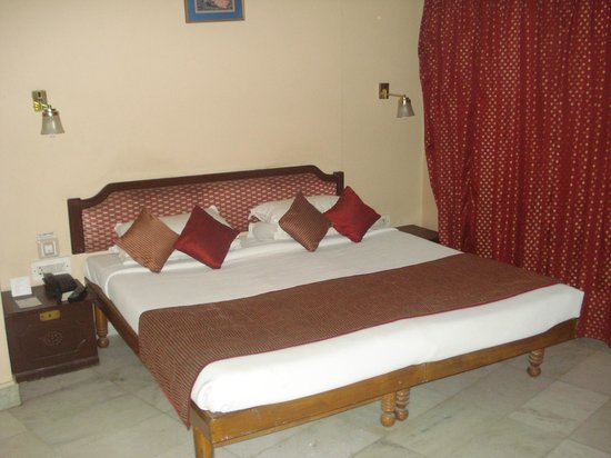 Hotel Vishnupriya:                   room view