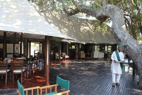 Hamiltons Tented Safari Camp: Main lodge area