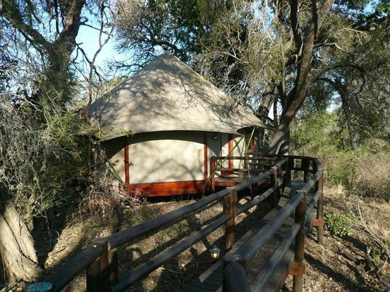 Hamiltons Tented Safari Camp: tent