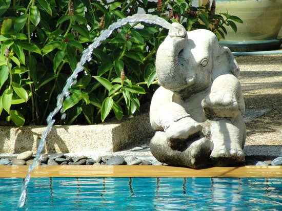 Le Piman Resort:                   Pool Decor