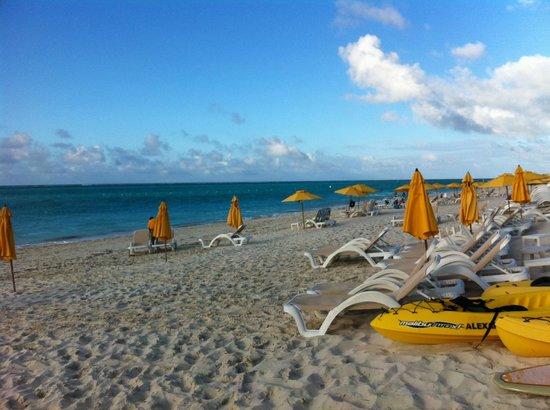 ذا ألكسندرا ريزورت: beach area