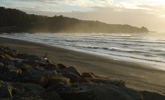Punakaiki Beach Hostel :                   La plage