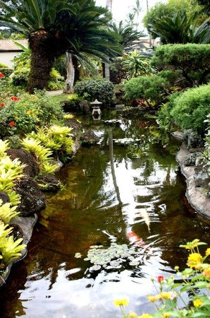 Pono kai resort updated 2018 reviews price comparison for Koi pond price