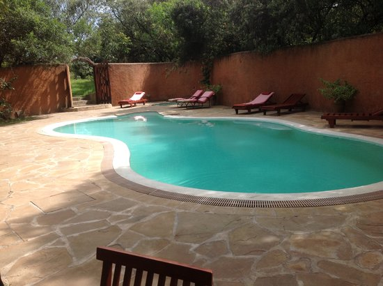 Mara Bush Houses, Asilia Africa:                   The pool