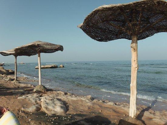 Al Nabila Grand Bay Makadi:                   ?