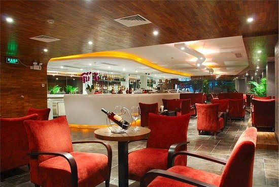 Henry Business Hotel: Bar