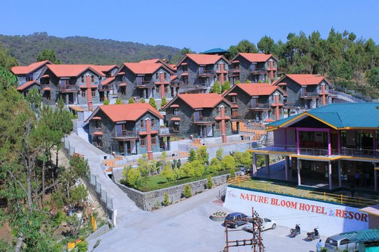 Nature Bloom Hotel & Resort:                   location of Hotel